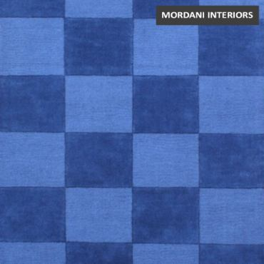 005 A Elegant Modern Blue Checks Area Rug