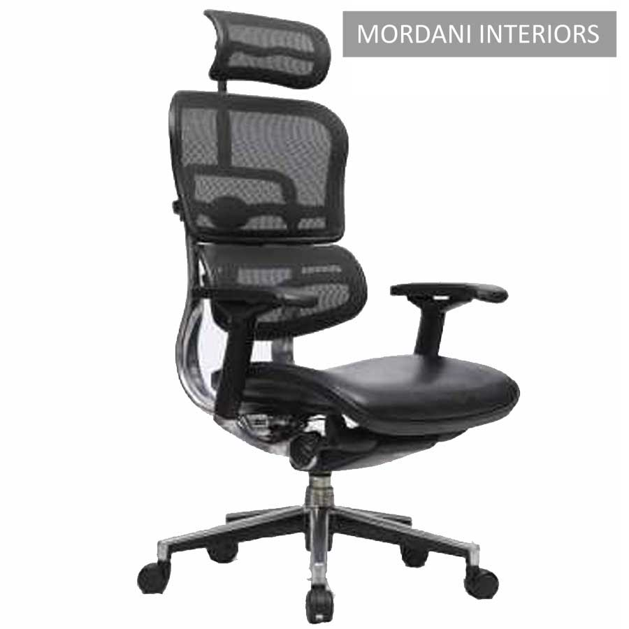 Ergohuman HB With Leather Seat