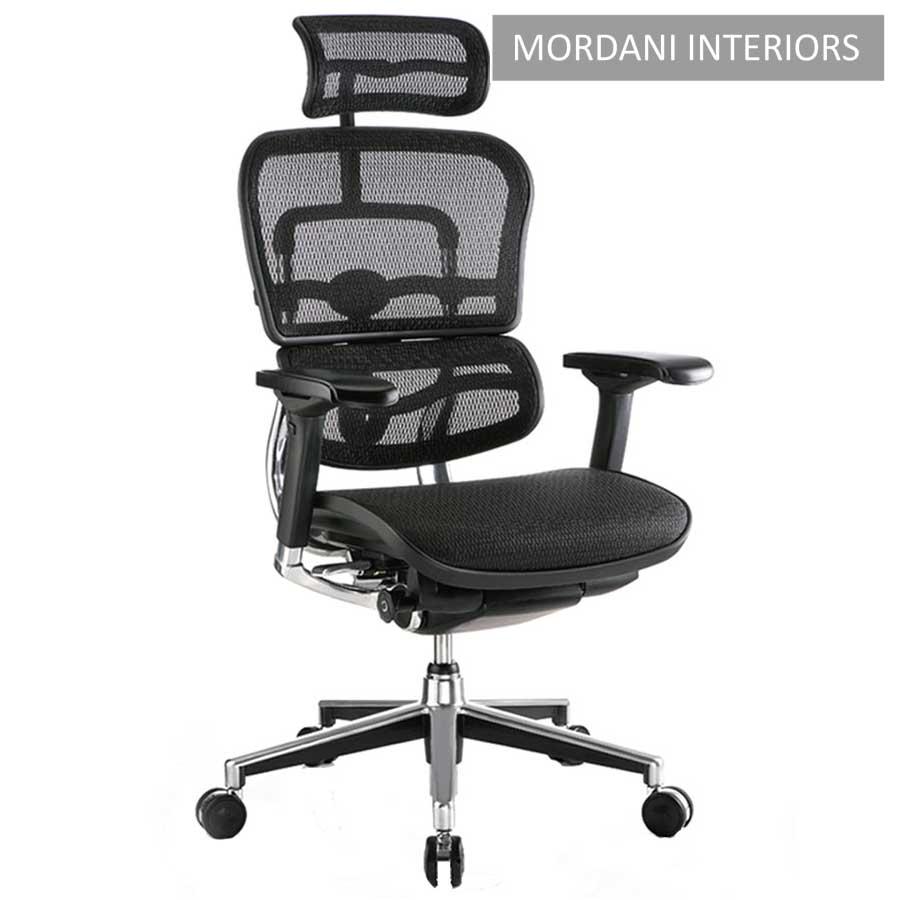 Ergohuman High Back Ergonomic Office Chair