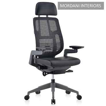 Fischer High Back Ergonomic Office Chair