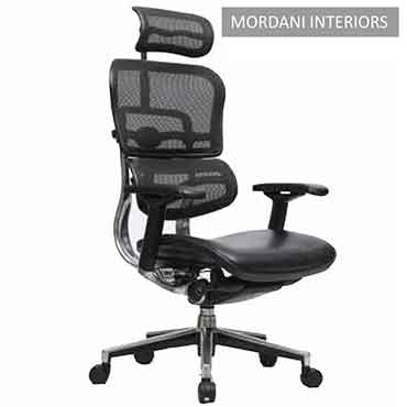 Ergohuman High Back Ergonomic Office Chair